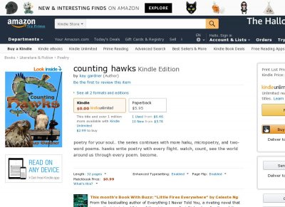 counting hawks